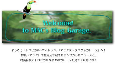 BlogTitle380.jpg